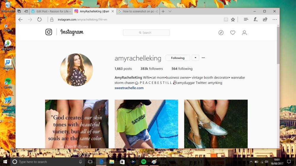 Amy King