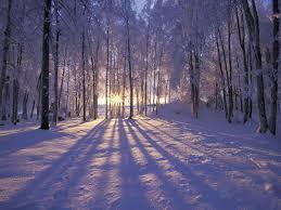 winter 1